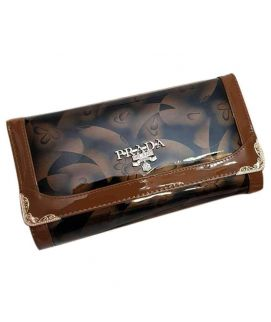 Brown Shining Leather Clutch For Women