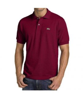 Mens Maroon Polo Shirt