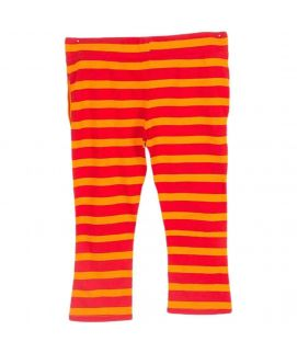 Fashion Café Orange & Red Cotton Printed Jogging Pants for Both NSB2 24